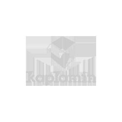 kaplamin